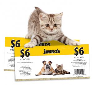 Kitten with vouchers